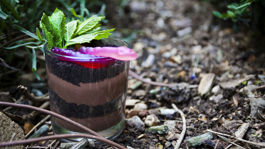 CHOCOLATE DIRT POT