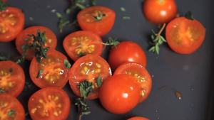 dry the tomatoes